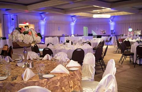 Rent event spaces venues for parties in saint louis eventup holiday inn st louis sw route 66 junglespirit Choice Image